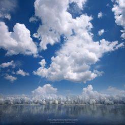 Ciel de Cotton