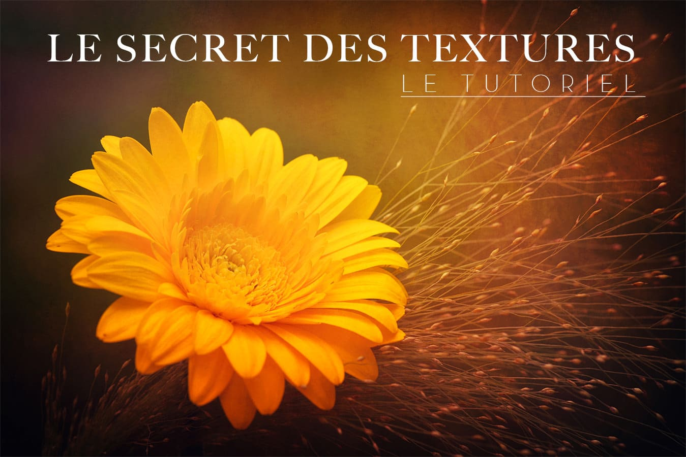 Le secret des textures