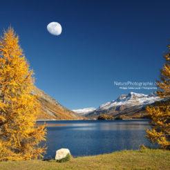 Lune d'Automne
