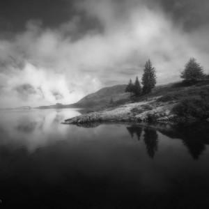 Photo de brouillard en noir et blanc