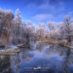 La Photo en hiver
