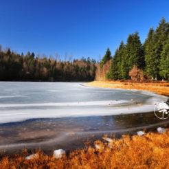 Le Bateau dans la glace