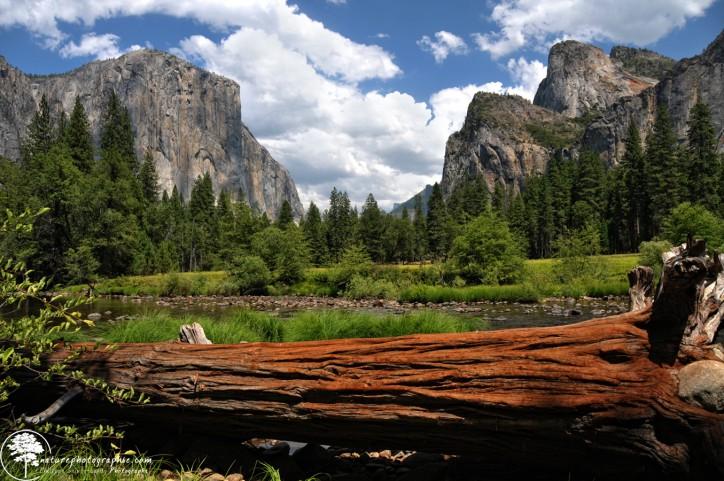 La Vallée de Yosemite