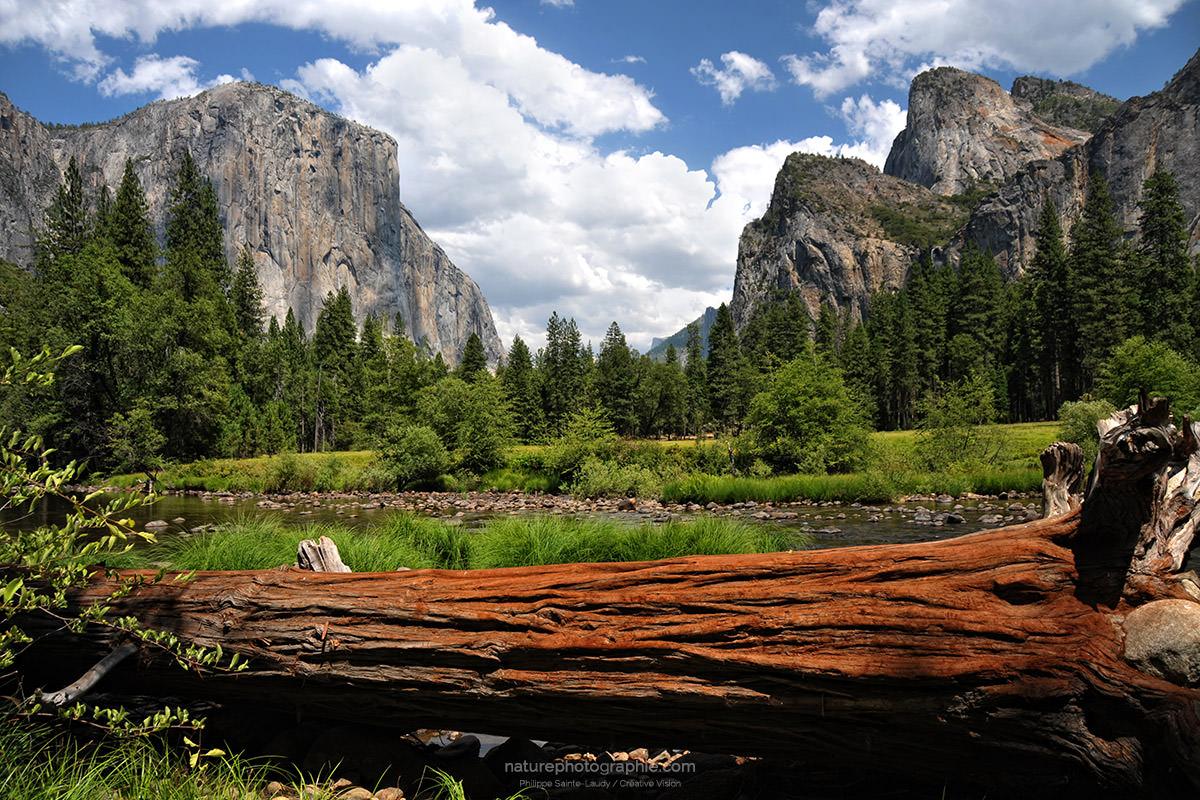 Vallée-de-Yosemite