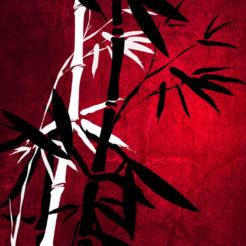 Bambous Style