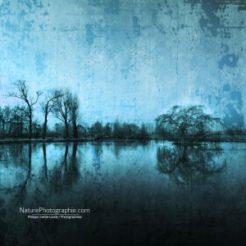 Réflexion Bleu