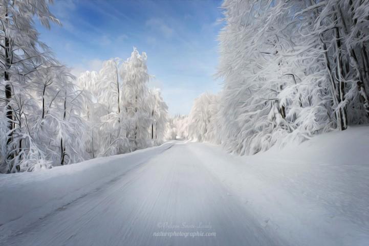 Les Vosges en hiver en paintographie