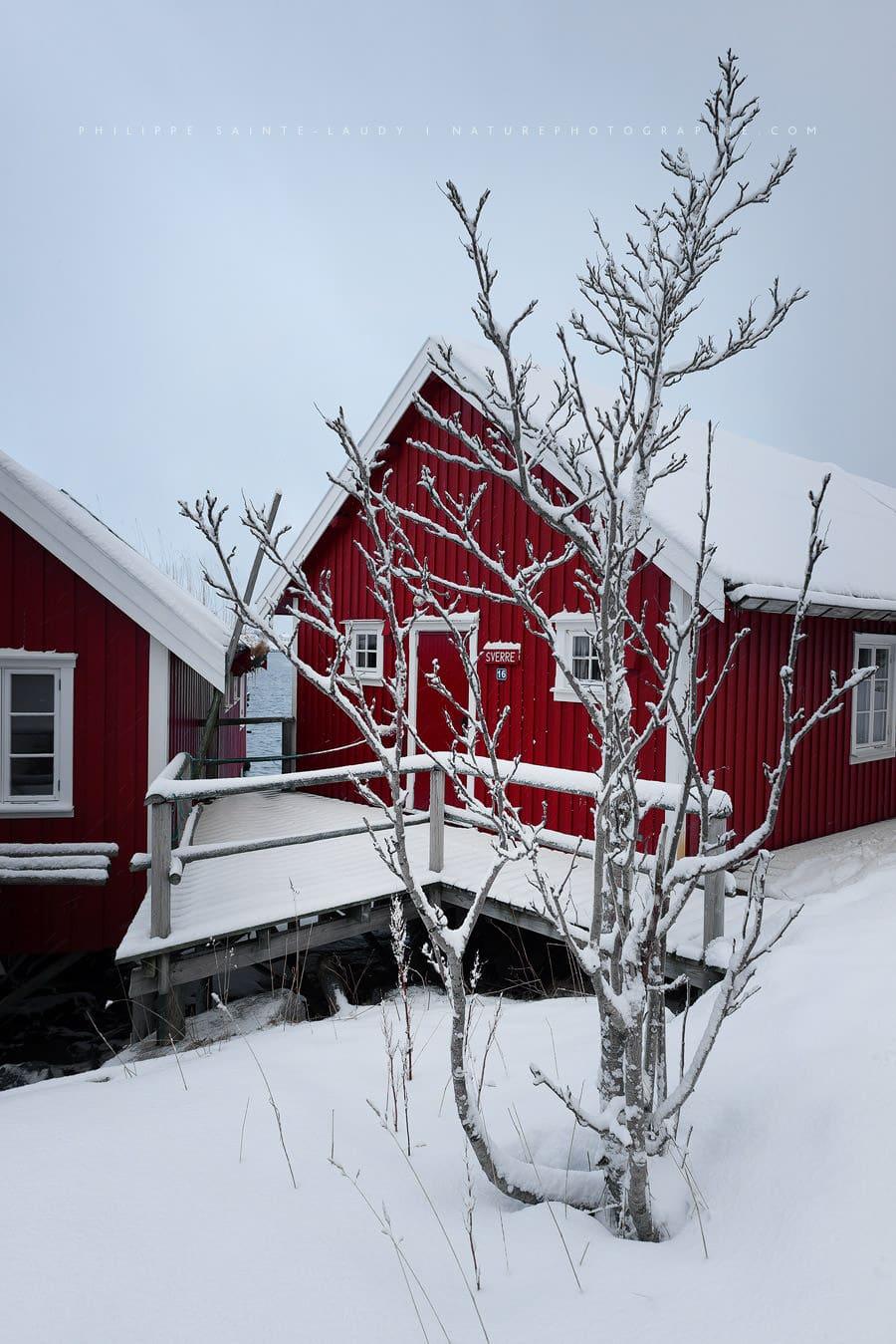 Norvegian Red Cabin