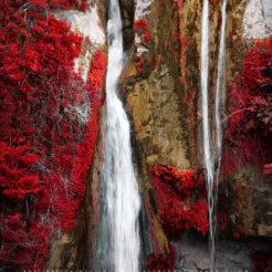Corse et Paintography