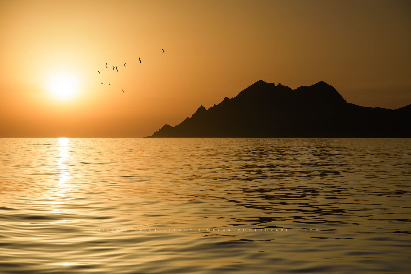 Golden sunset in Corsica