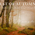 Automne - Best of 2016