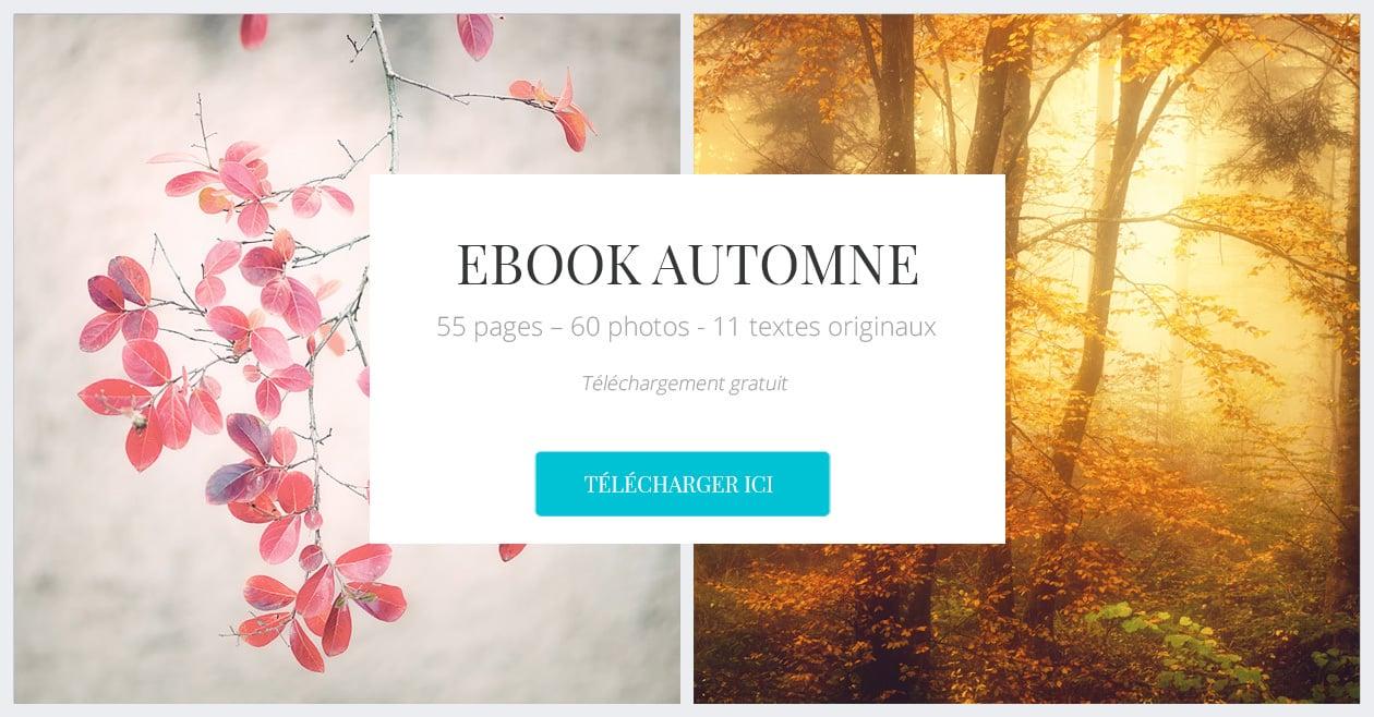 Télécharger le ebook automne