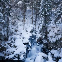 Les 1000 Étangs en hiver