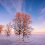Un matin glacé à Oulu