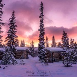 Cabanons et sapins au coucher du soleil - Finlande