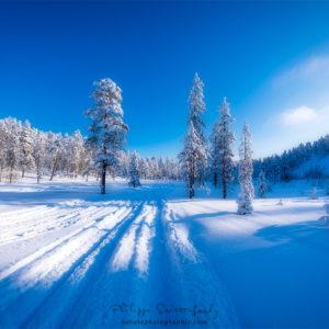 Champs de neige en Finlande