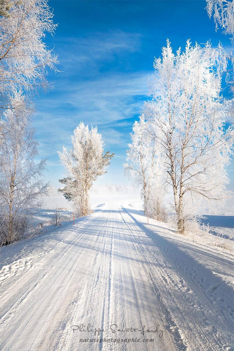 Paysage de Finlande avec une route enneigée