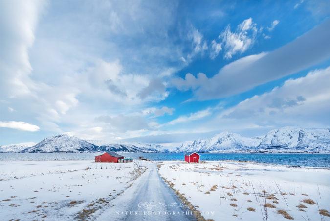 Paysage blanc de Norvège