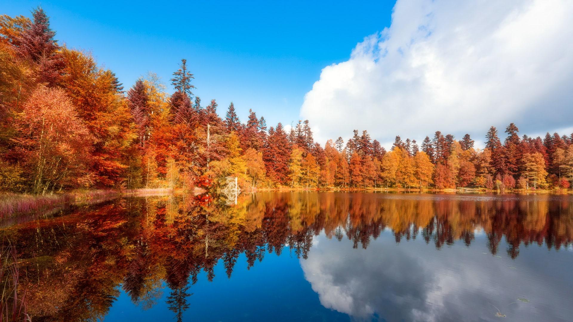 Lac de la Maix - Vosges
