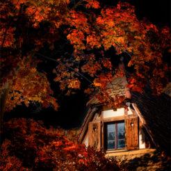 Ferme Alsacienne en automne