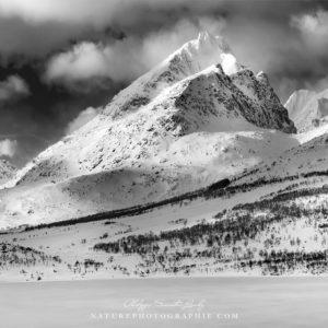 Noir et blanc aux Lofoten