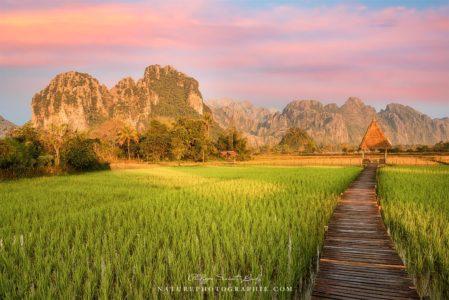 Lever de soleil sur les rizières de Vang Vieng au Laos