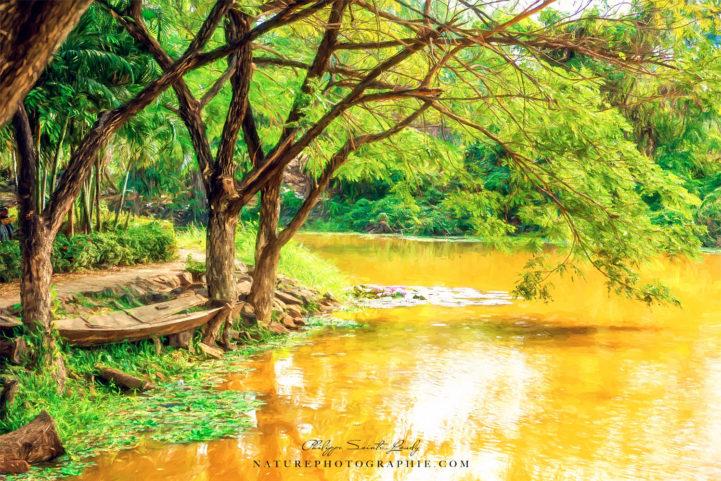 Paintographie d'un paysage en bordure du Mékong