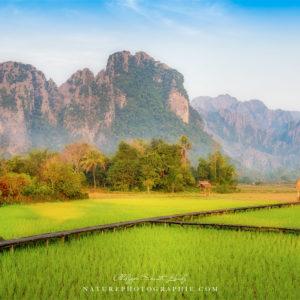Rizières et montagnes de Vang Vieng