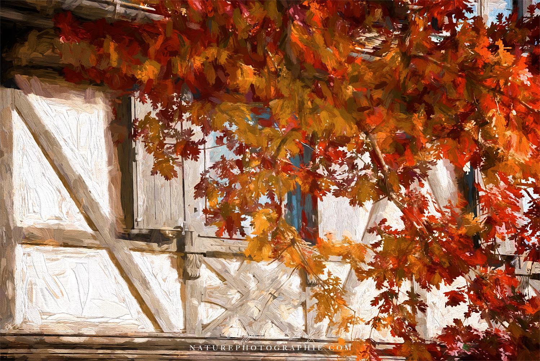 Maison Alsacienne en automne