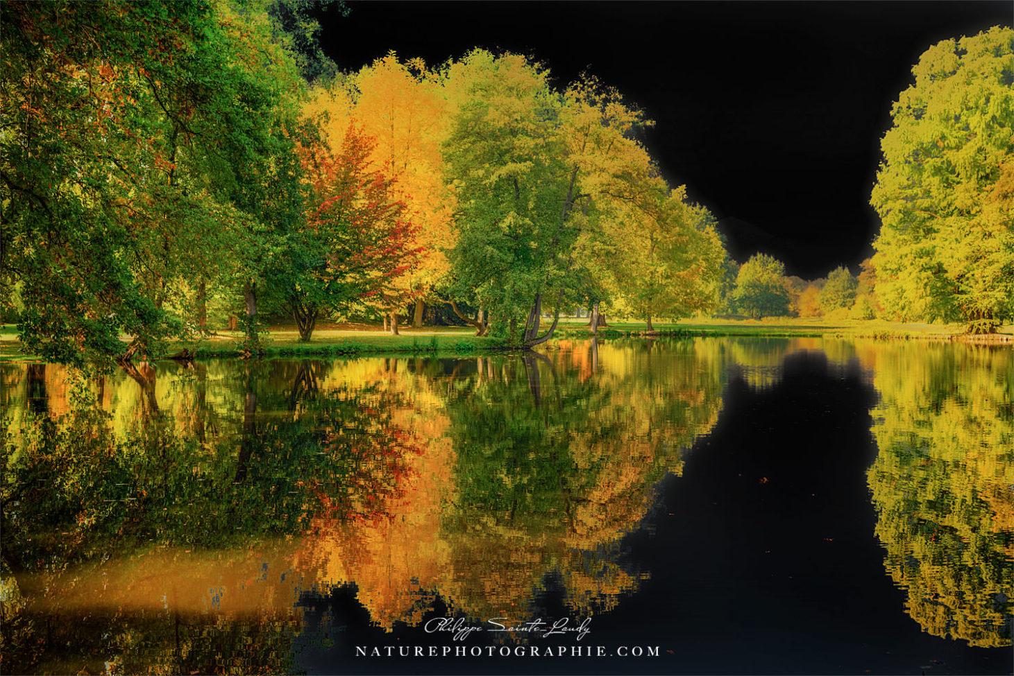 Autumn Lined Black