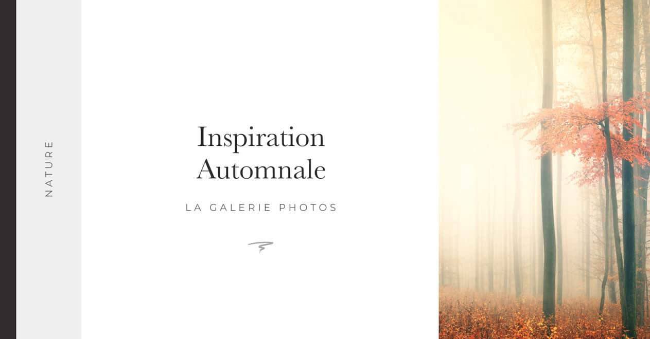 Inspiration-Automnale