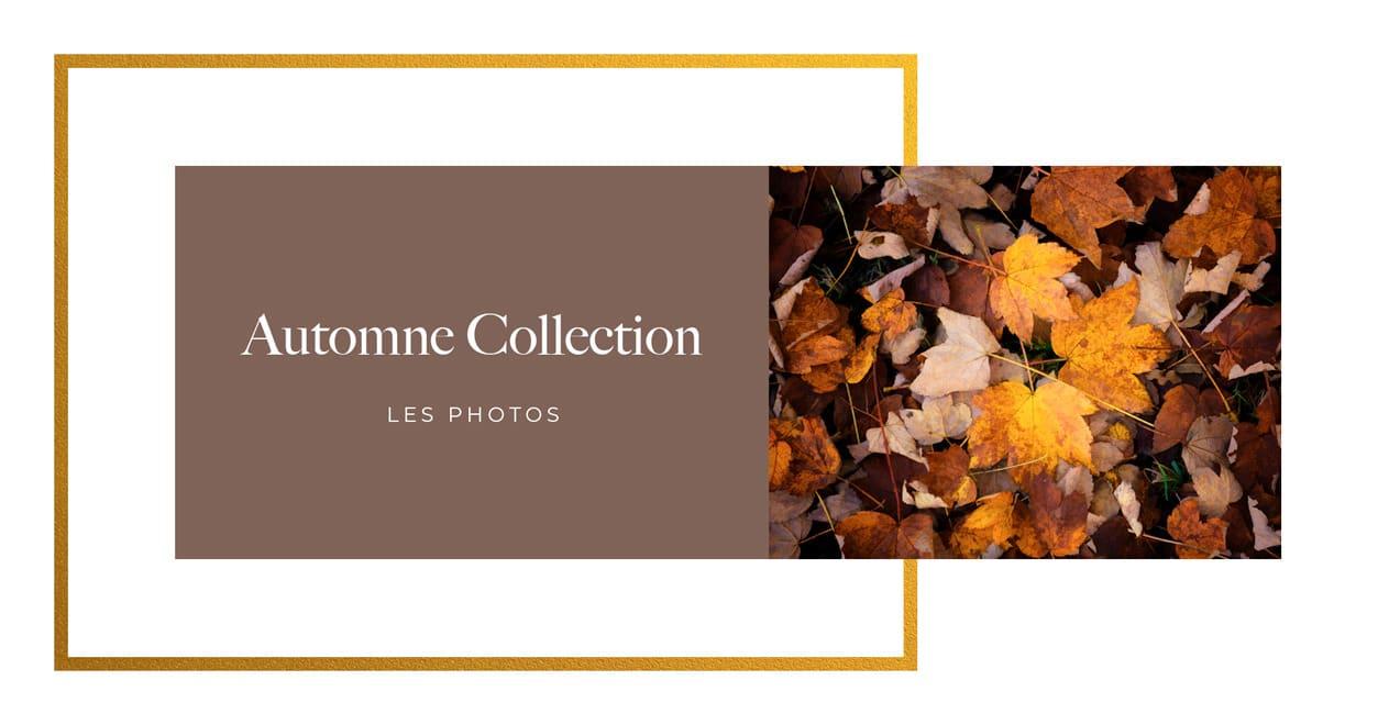 La collection automne