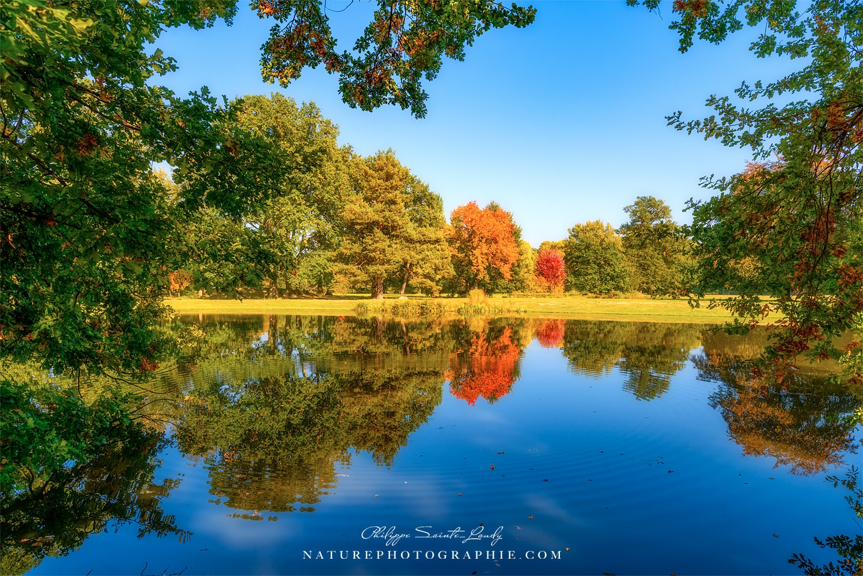 L'automne est un reflet