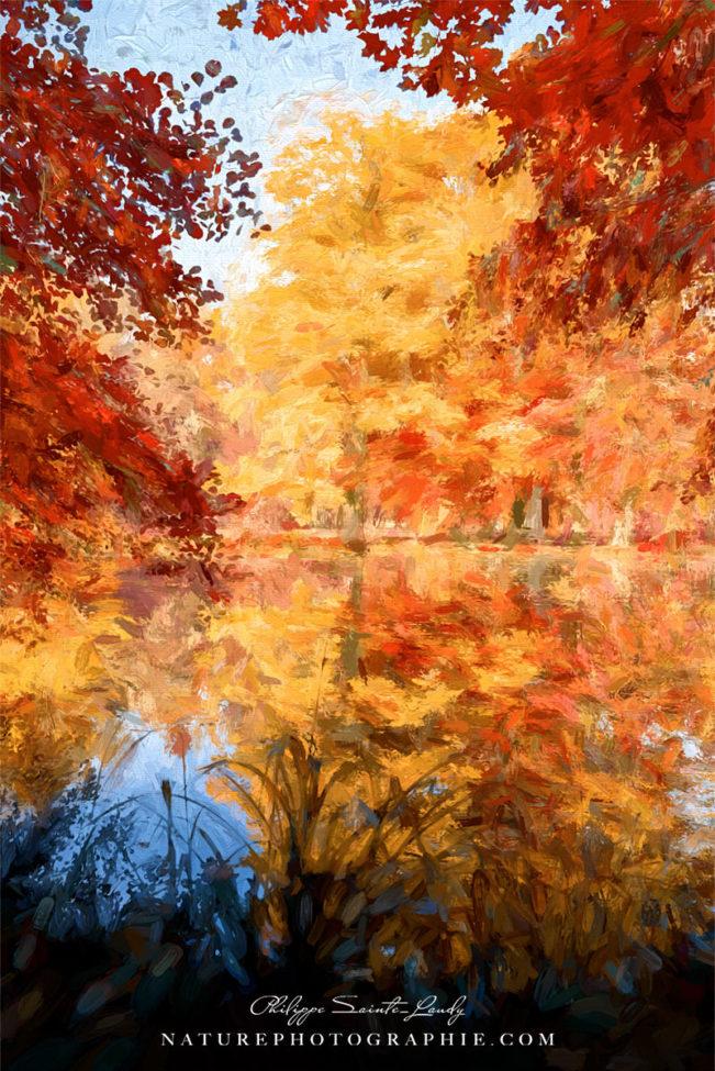Un Reflet d'automne