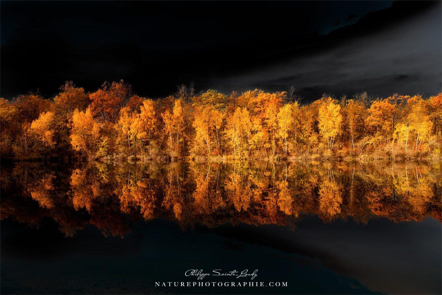 Black Sky in Autumn