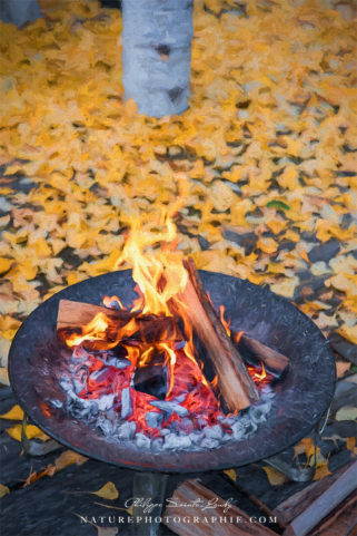Brasero d'automne