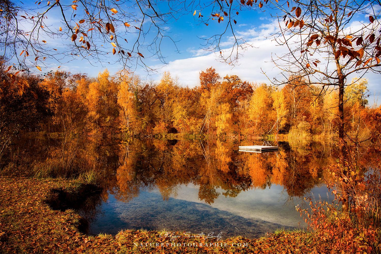 Breathing Autumn