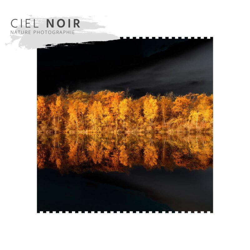Ciel Noir Galerie