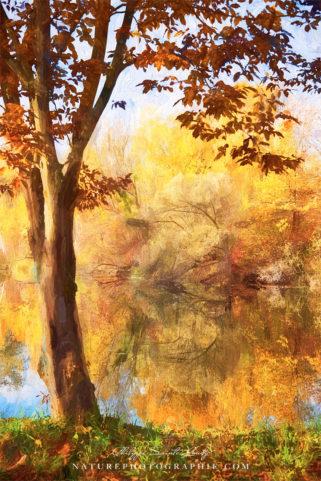 Peinture d'automne au bord de l'eau