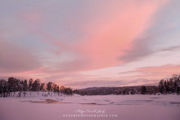 My Pink Heaven