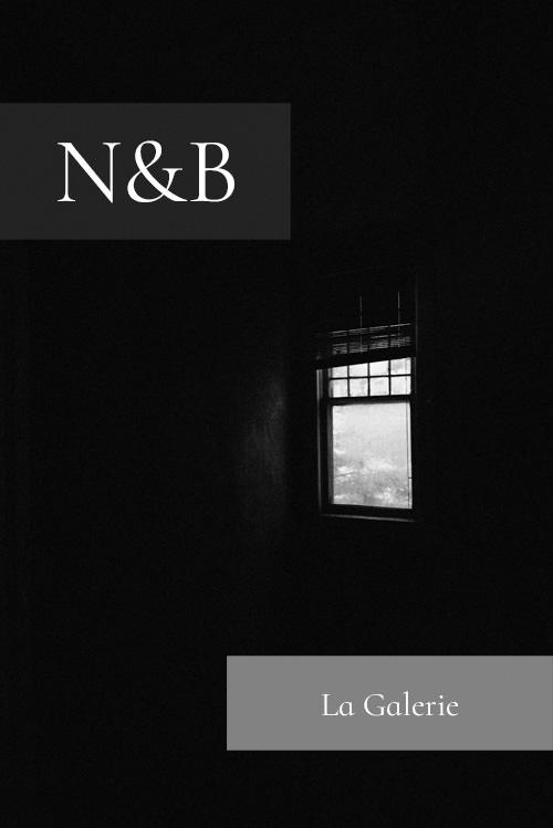 Galerie-N&B