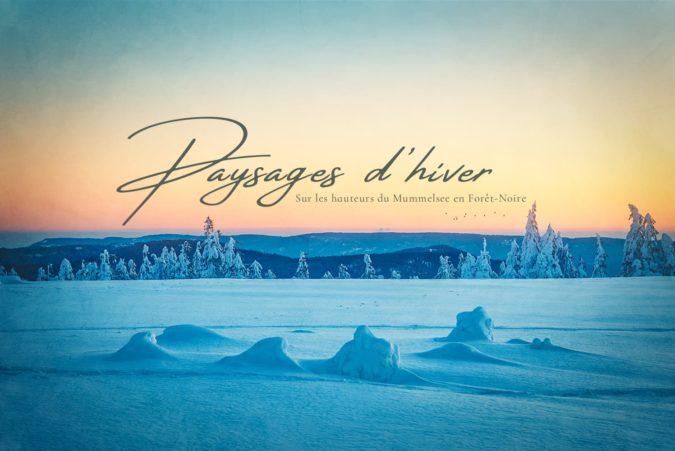Paysages-d'hiver-en-Forêt-Noire