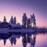 Purple Duplication