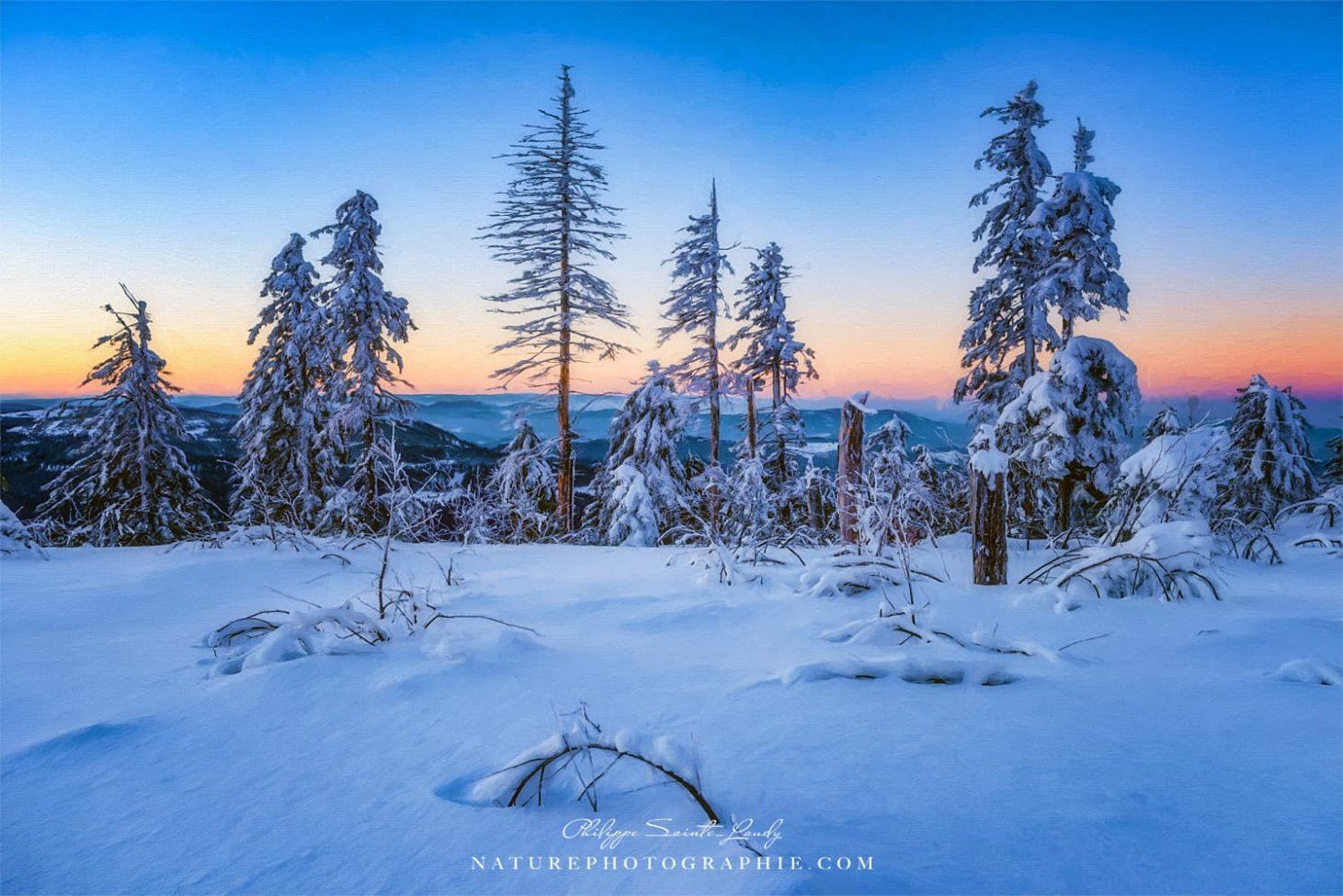 Winter Attire