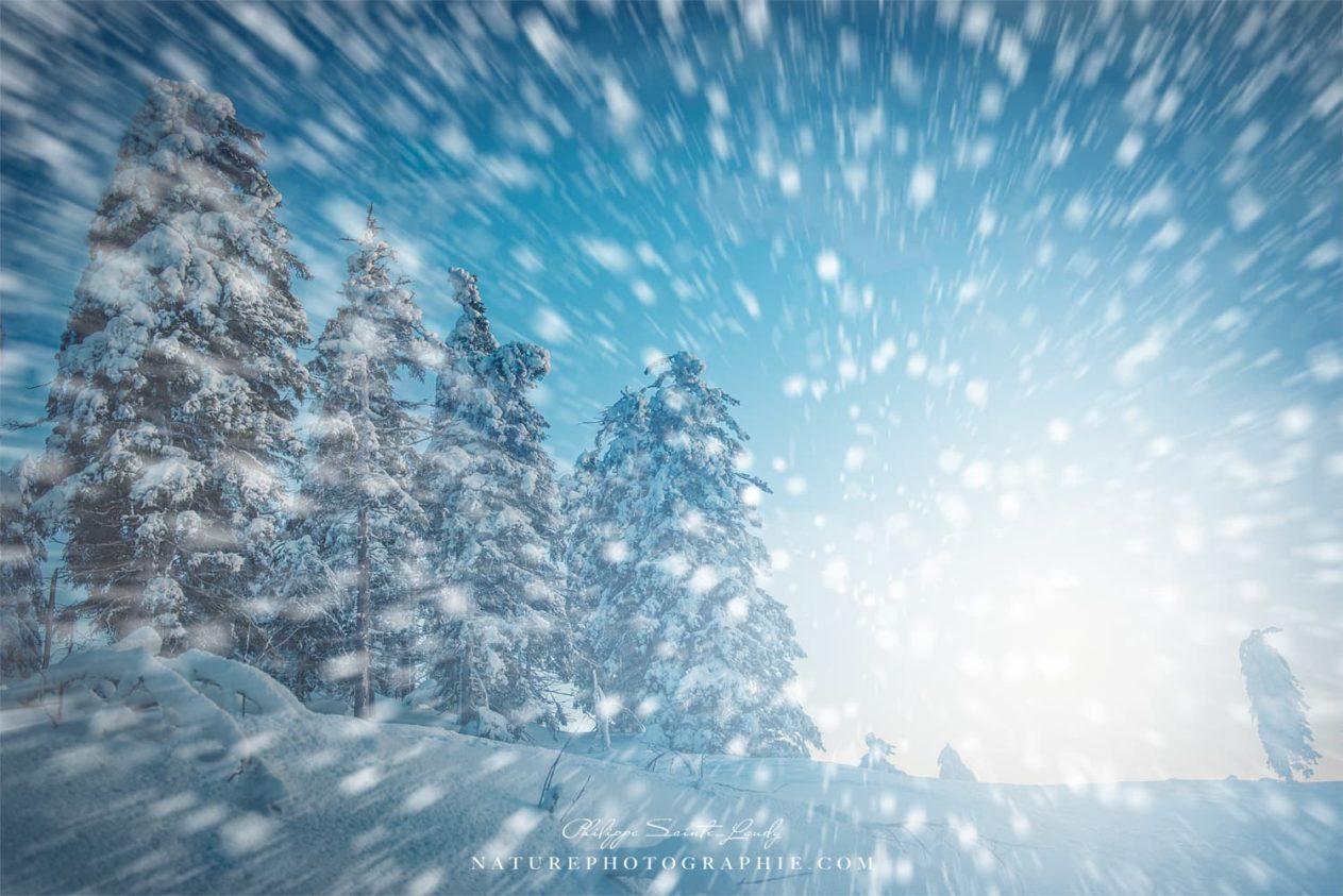 Winter Blast