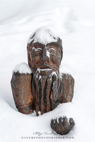 Wooden Sculpture Around Lake Mummel