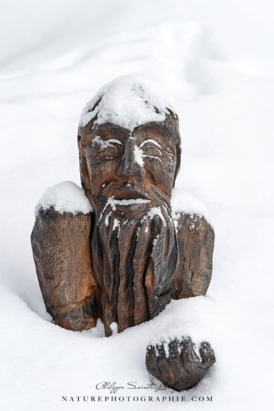 Wooden Sculpture Around Lake Mummel
