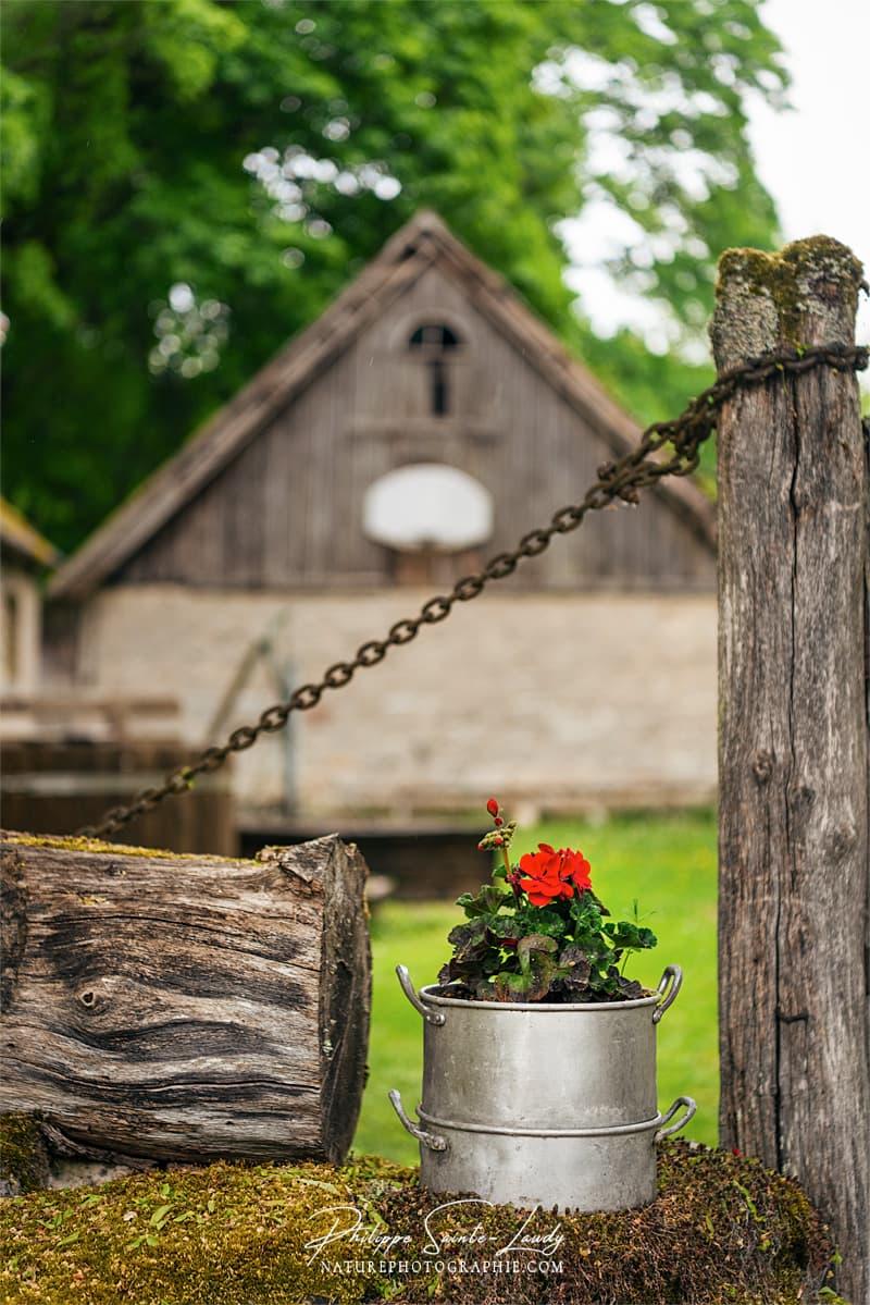 Des fleurs à l'entrée d'une ferme en Estonie