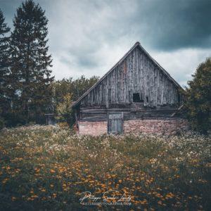 Une vieille ferme en Estonie sur l'île de Saaremaa