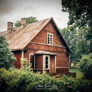 Une maison cachée par la végétation en Estonie